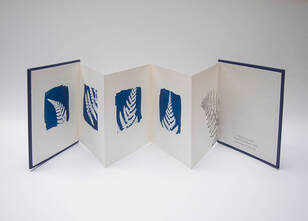 Cyanotypes and Books